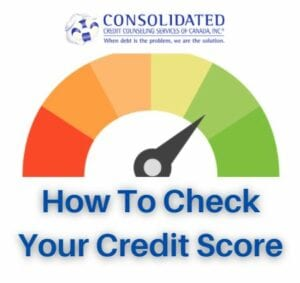 Image showing this topic: How to Check Your Credit Score